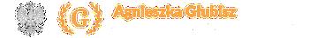 https://komornik-glubisz.pl/chusteet/2020/09/logo.png 2x